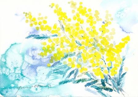 4月水彩色えんぴつ ミモザ