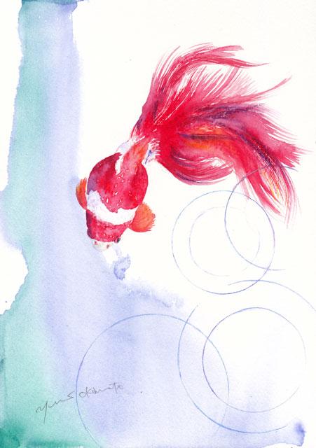 7月水彩色えんぴつ教室 金魚