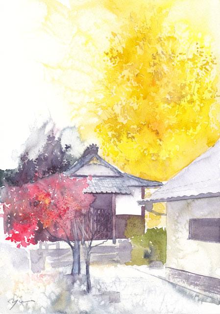11月朝日カルチャー 風景画 大イチョウのある寺
