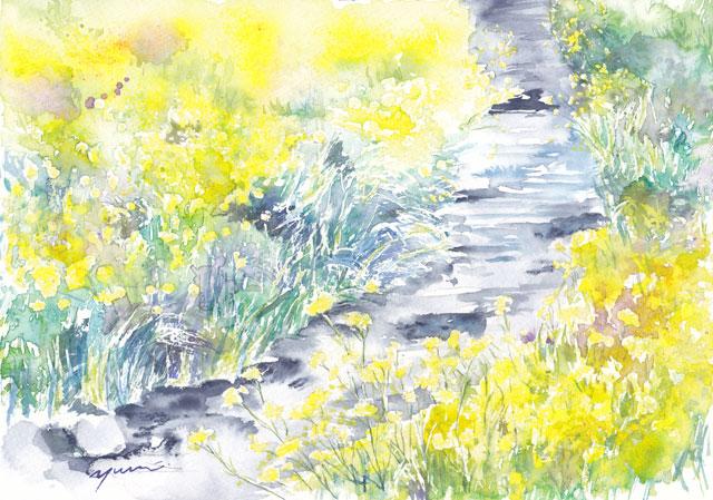 3月の水彩色えんぴつ教室 菜の花と小川