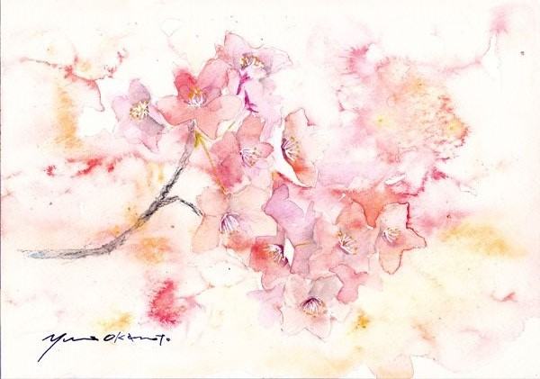 4月水彩色えんぴつ教室 モチーフ桜