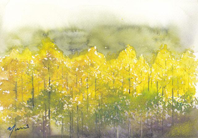 10月水彩色えんぴつ教室 (更新)カラマツ林