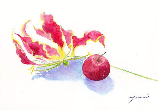 11月水彩色えんぴつ教室 グロリオサとりんご