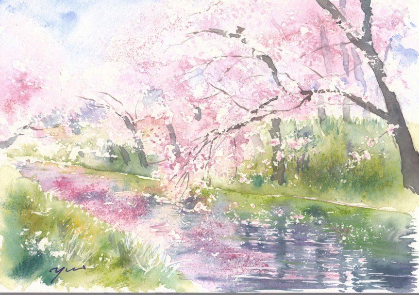 3月朝日カルチャー風景画コース 弘前公園桜