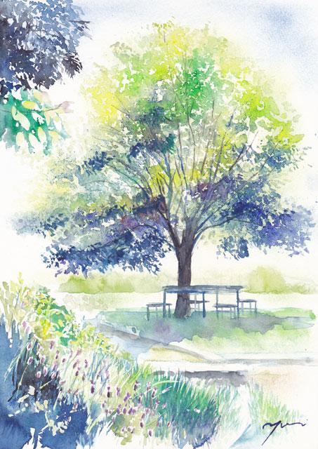 6月朝日カルチャー 風景画 ハーブ園の木陰で