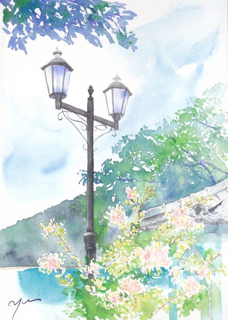 7月水彩色えんぴつ 風景画コース 街灯と百日紅