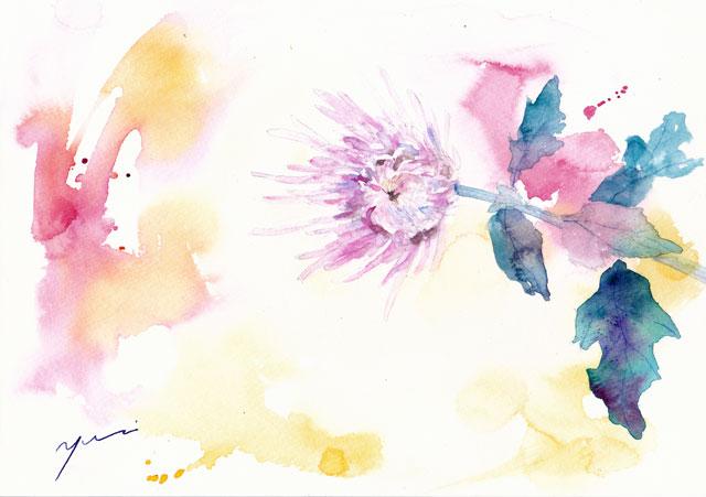 10月あいあいパーク 「いと菊」