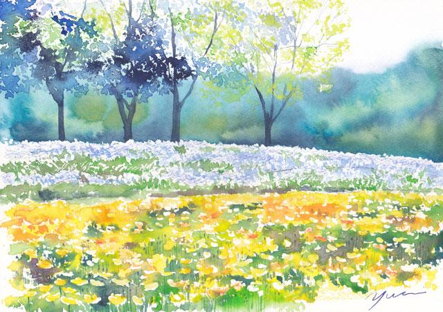 5月水彩色えんぴつ教室「花の咲く丘」