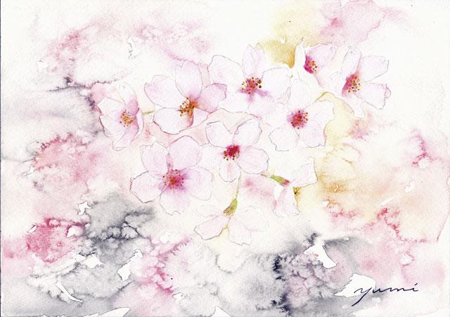 4月水彩色えんぴつ教室「さくら」