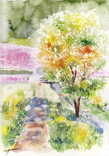 4月水彩色えんぴつ風景画コース「芝桜の咲く頃」