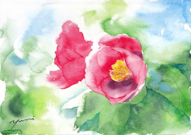 1月水彩色えんぴつ教室「椿」 描き方