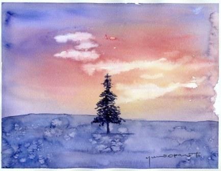 0812クリスマスの木2