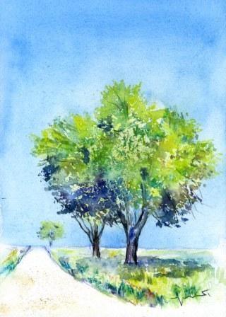 0904大地と木