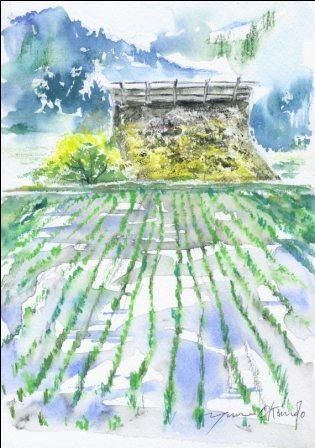 5月の朝日カルチャーセンター 風景画コース