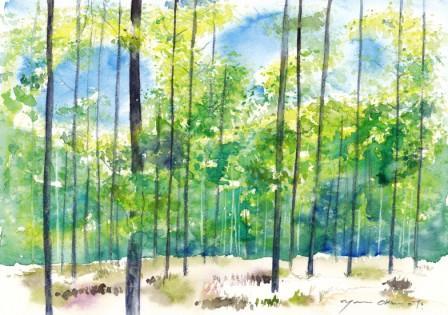 5月の水彩色えんぴつ教室 モチーフ