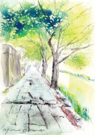 朝からタケノコと近江八幡