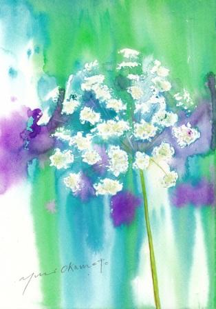 5月水彩色えんぴつ教室 モチーフ レースflower