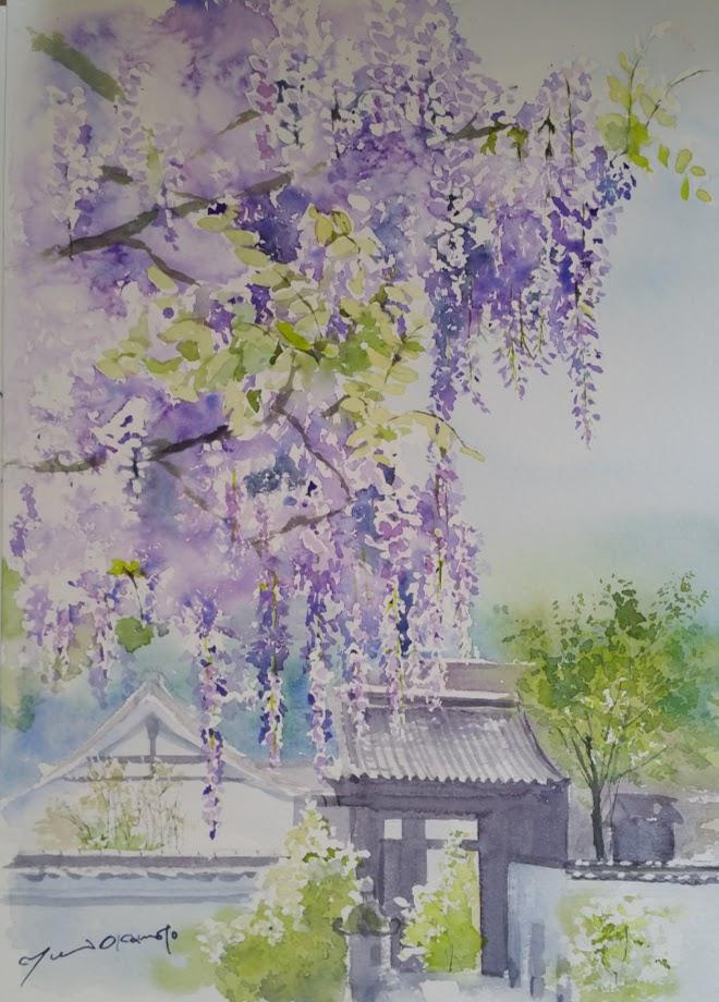 4月産経学園 藤の咲く寺