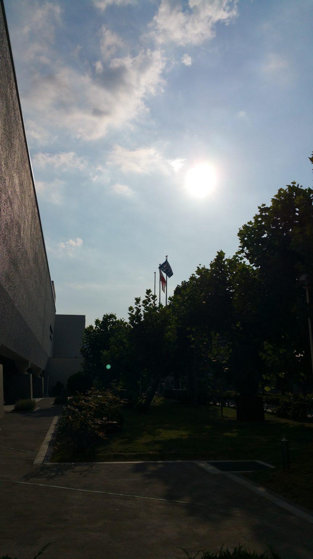 神戸新聞文化センター作品展はじまりました
