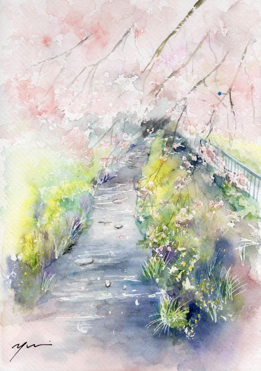 3月水彩色鉛筆 風景画コース「桜道」