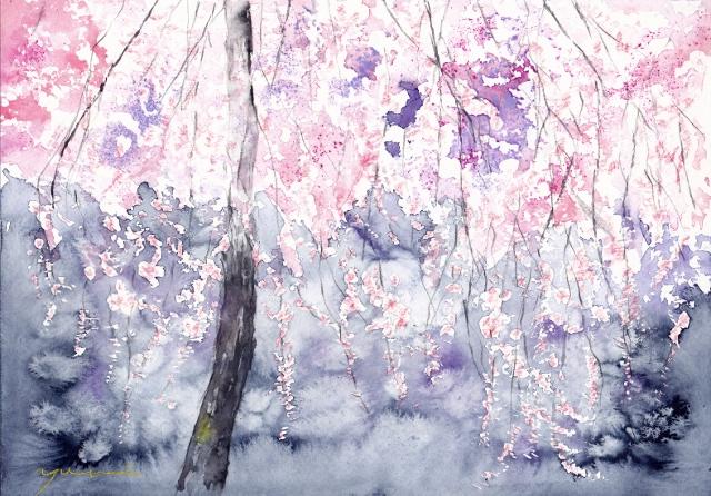 3月水彩色えんぴつ教室 しだれ桜