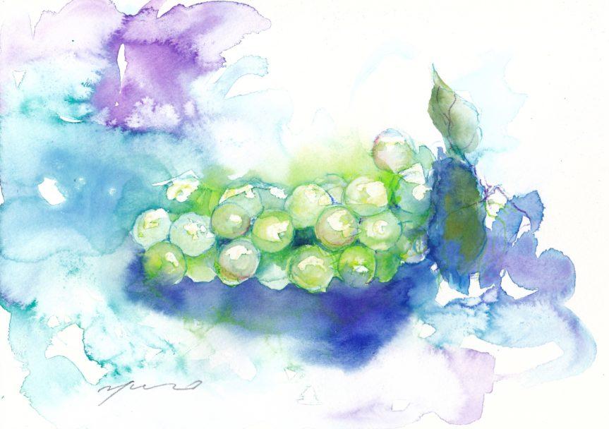 8月の水彩色えんぴつ教室 ブドウ