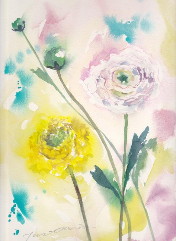 1月水彩色えんぴつ教室 ラナンキュラス 背景4パターン