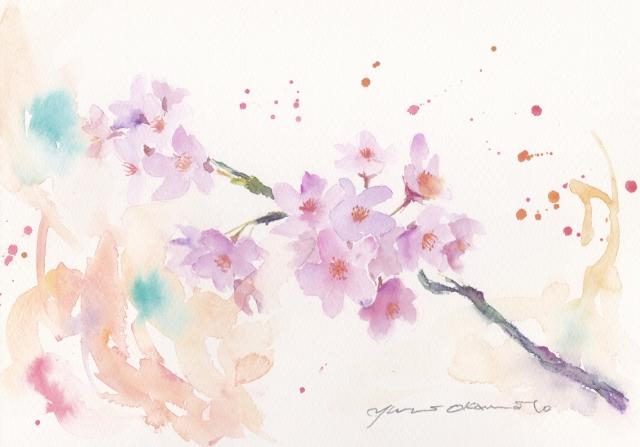 2 月水彩色えんぴつモチーフ 桜