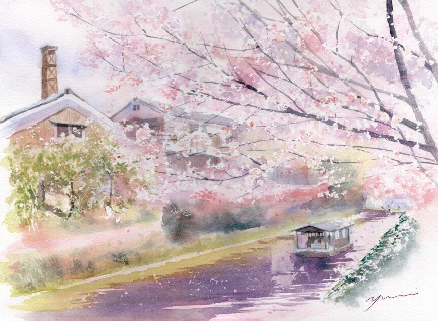 4月 透明水彩「伏見の桜」産経学園